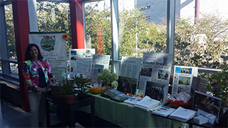 HT Photo 7 Final Touch Plantscapiing Display